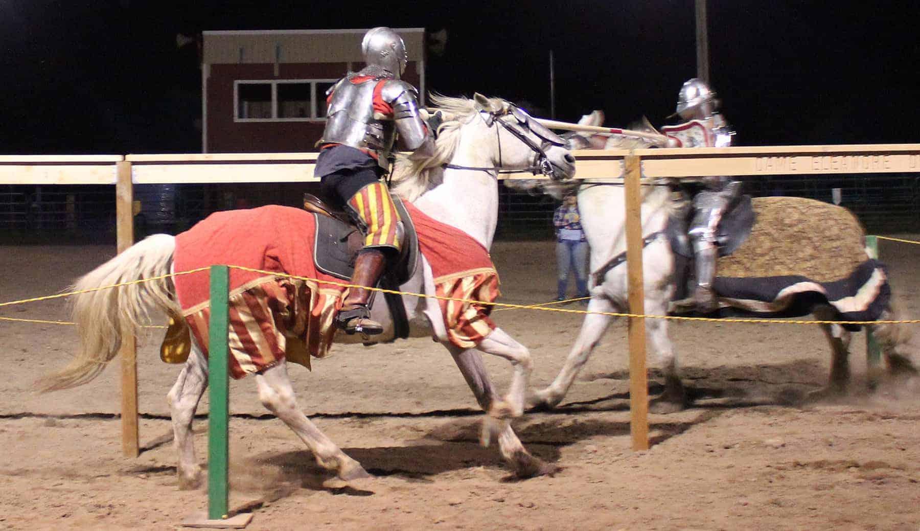 Jousting Horses