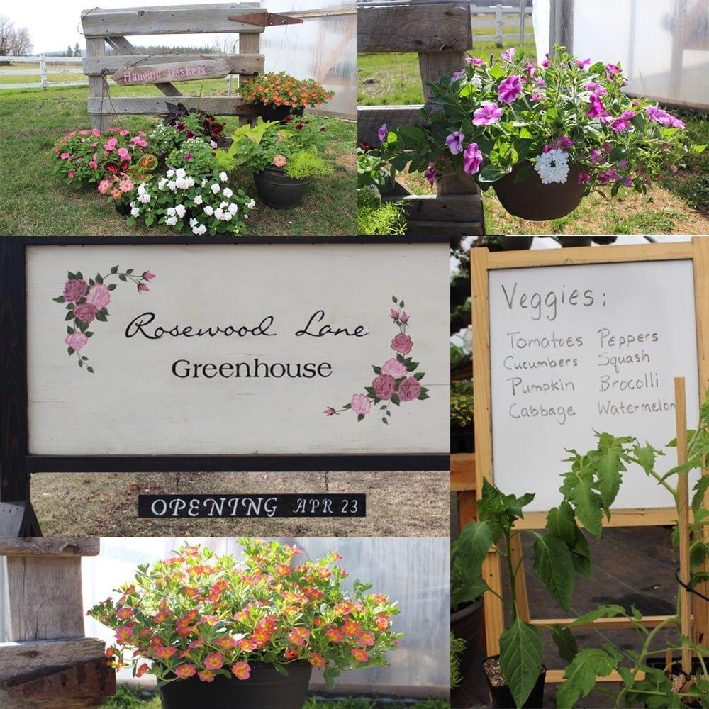 Season Opening: Rosewood Lane Greenhouse